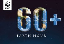 Earth-Hour-Afis-Web